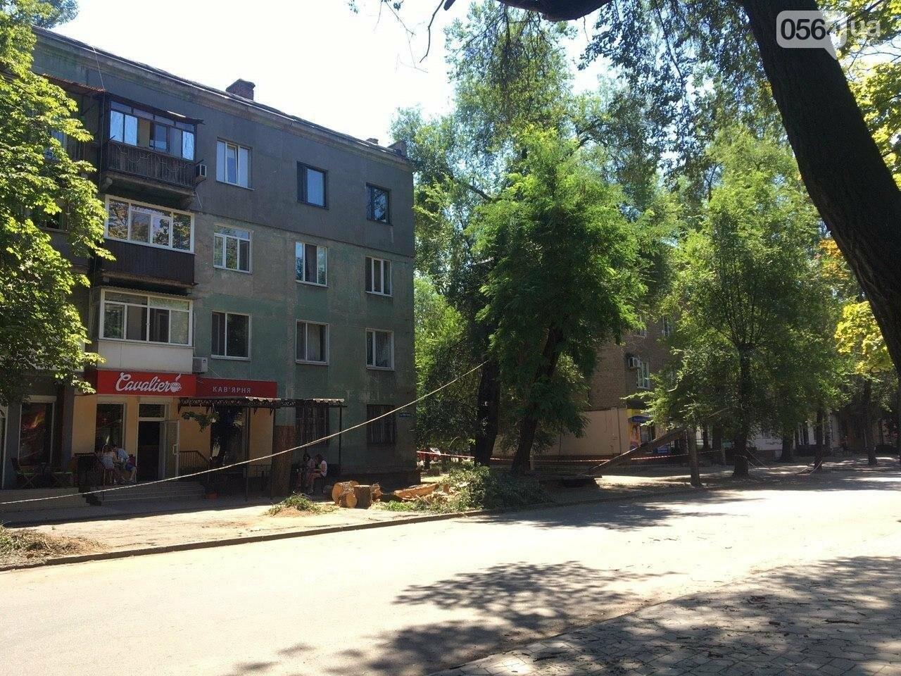 В Кривом Роге сломавшаяся электроопора, удерживаемая каркасом из арматуры, зависла прямо над тротуаром, - ФОТО, фото-11