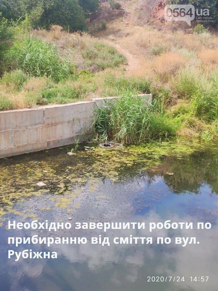 В Кривом Роге проверили чистоту прибрежной зоны Старой Саксагани, - ФОТО , фото-5
