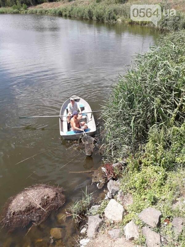 В Кривом Роге выясняют причины гибели рыбы в пруду в центре города, - ФОТО , фото-4