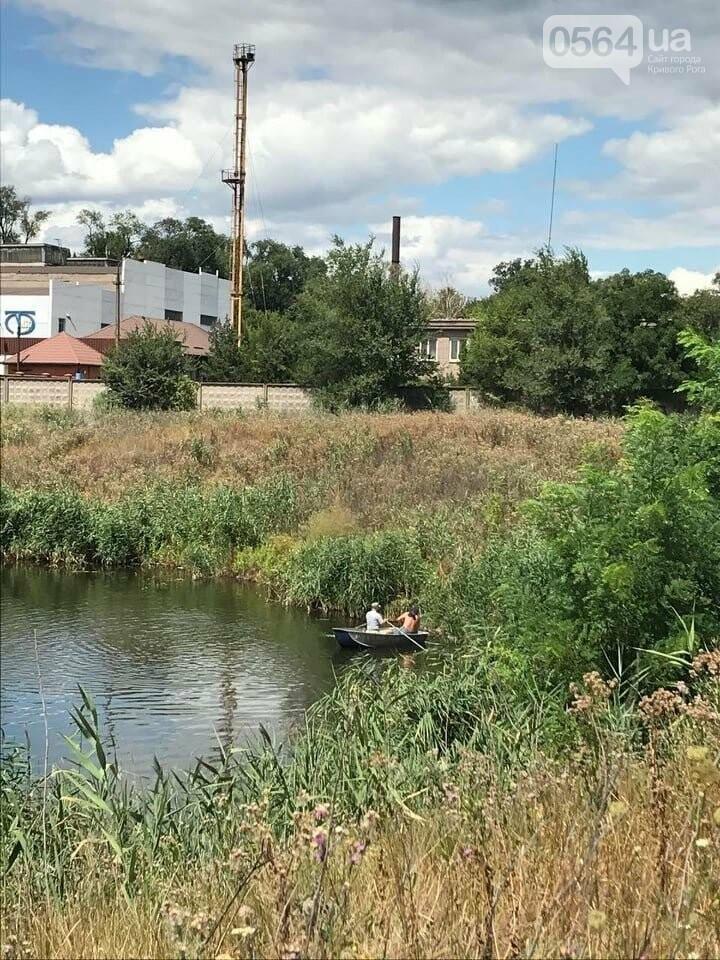 В Кривом Роге выясняют причины гибели рыбы в пруду в центре города, - ФОТО , фото-6
