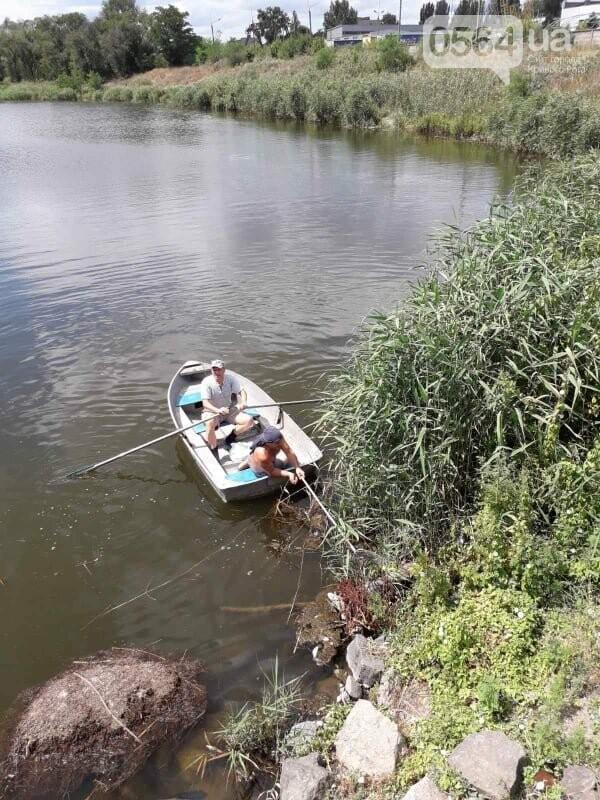 В Кривом Роге выясняют причины гибели рыбы в пруду в центре города, - ФОТО , фото-7
