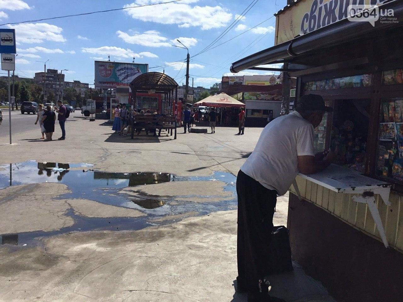 Через пару недель после ремонта в центре Кривого Рога снова фонтанируют стоки, - ФОТО, ВИДЕО, фото-3