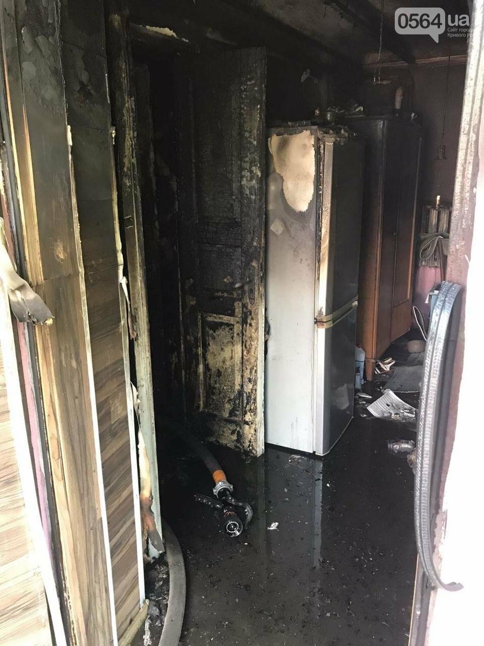 Из горящего дома криворожские спасатели эвакуировали 89-летнюю женщину, фото-2