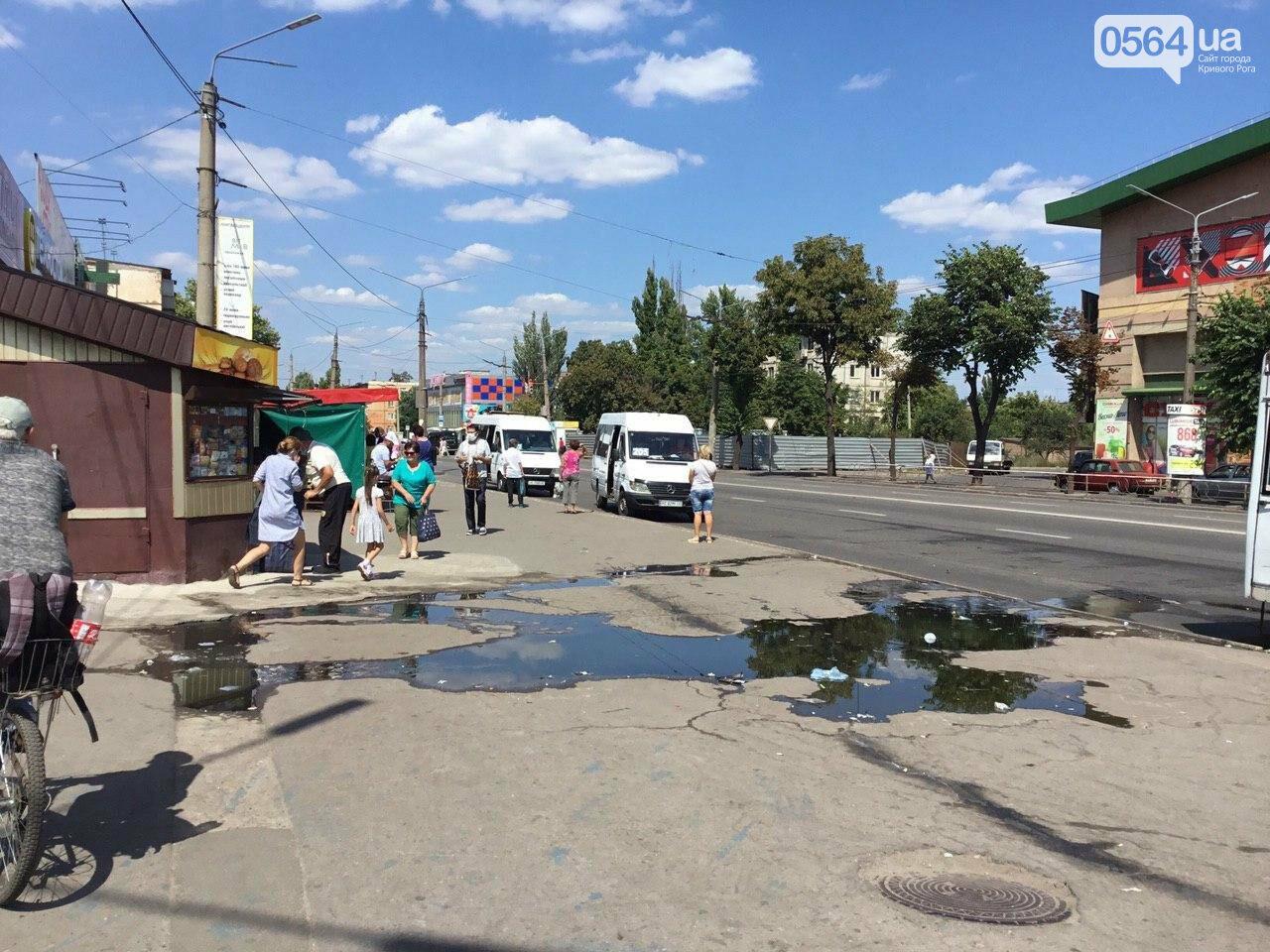 """""""Изношенные бесконечным мусором трубы и реки нечистот на улицах - это лицо нашего города"""", - криворожан просят не засорять канализацию, - ФОТО, фото-1"""
