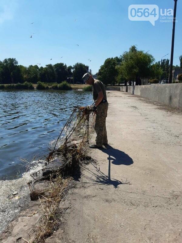 В Кривом Роге убрали водное зеркало пруда, где обнаружили гибель рыбы, - ФОТО , фото-2