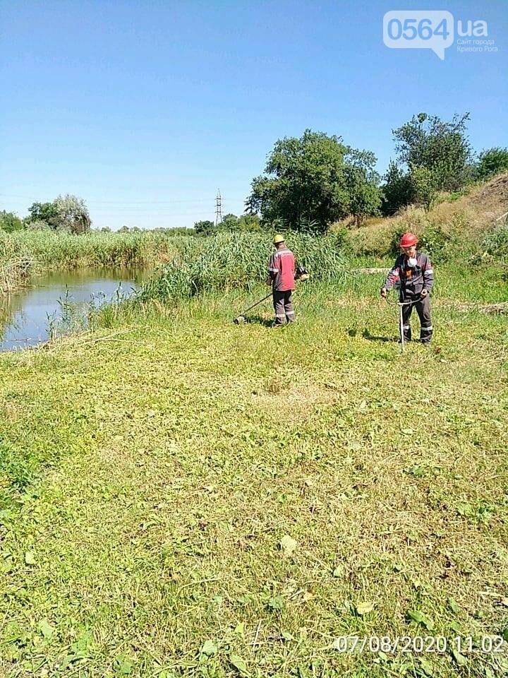 Криворожские экологи рассказали о результатах мониторингового исследования воды в Саксагани, - ФОТО , фото-5