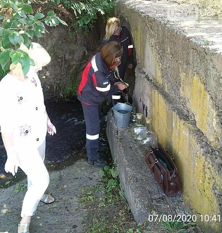 Криворожские экологи рассказали о результатах мониторингового исследования воды в Саксагани, - ФОТО , фото-2