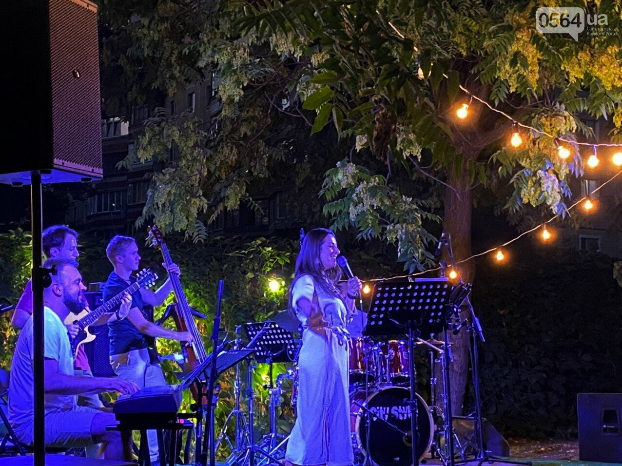 Под звездным небом криворожане наслаждались летним джазом от  Advantage Project, - ФОТО, ВИДЕО , фото-52