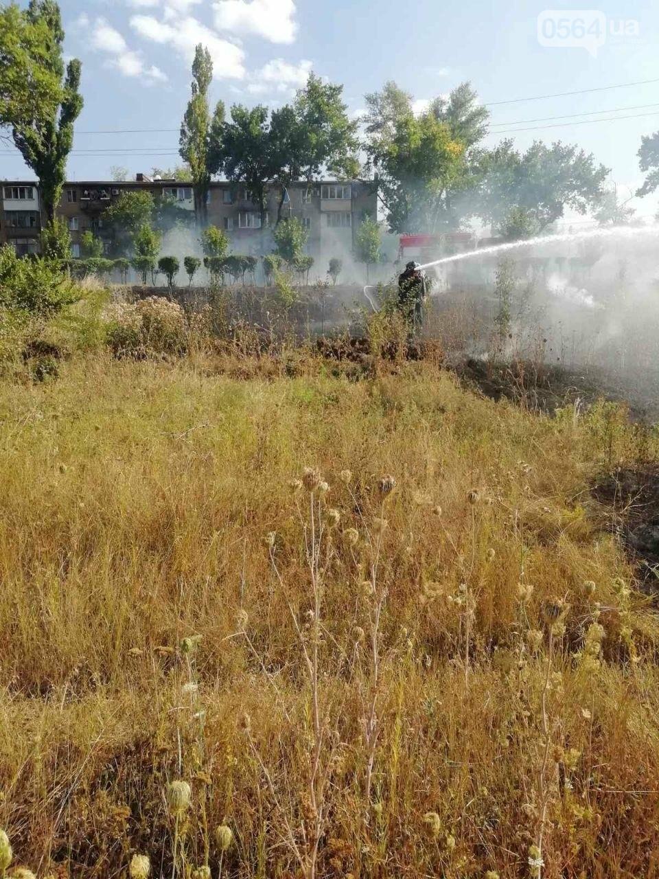 За прошедшие сутки в Кривом Роге произошло 5 пожаров в эко-системе, - ФОТО , фото-3