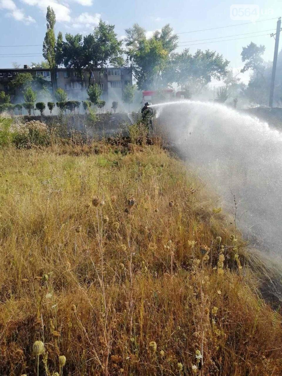 За прошедшие сутки в Кривом Роге произошло 5 пожаров в эко-системе, - ФОТО , фото-7