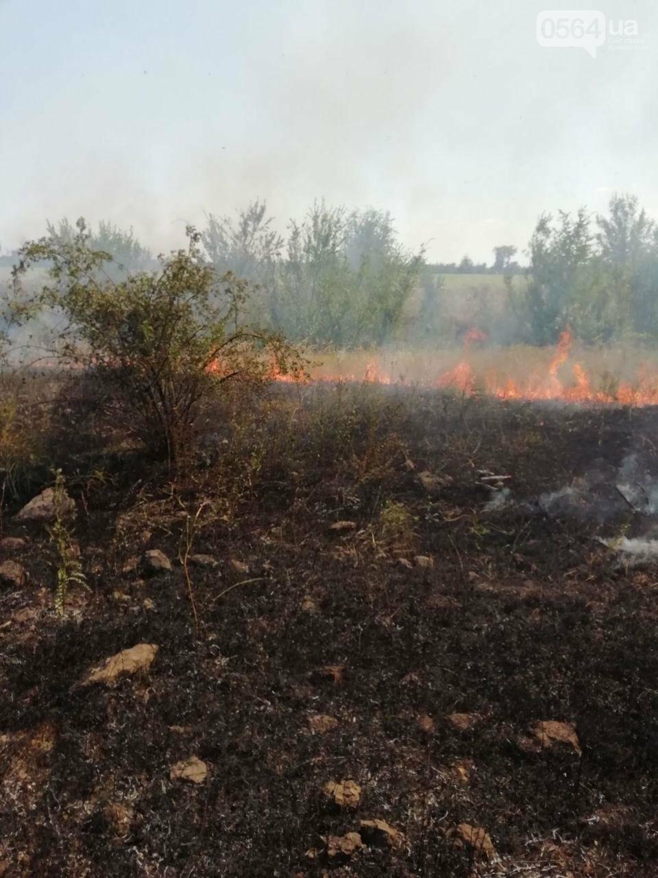 За прошедшие сутки в Кривом Роге произошло 5 пожаров в эко-системе, - ФОТО , фото-5