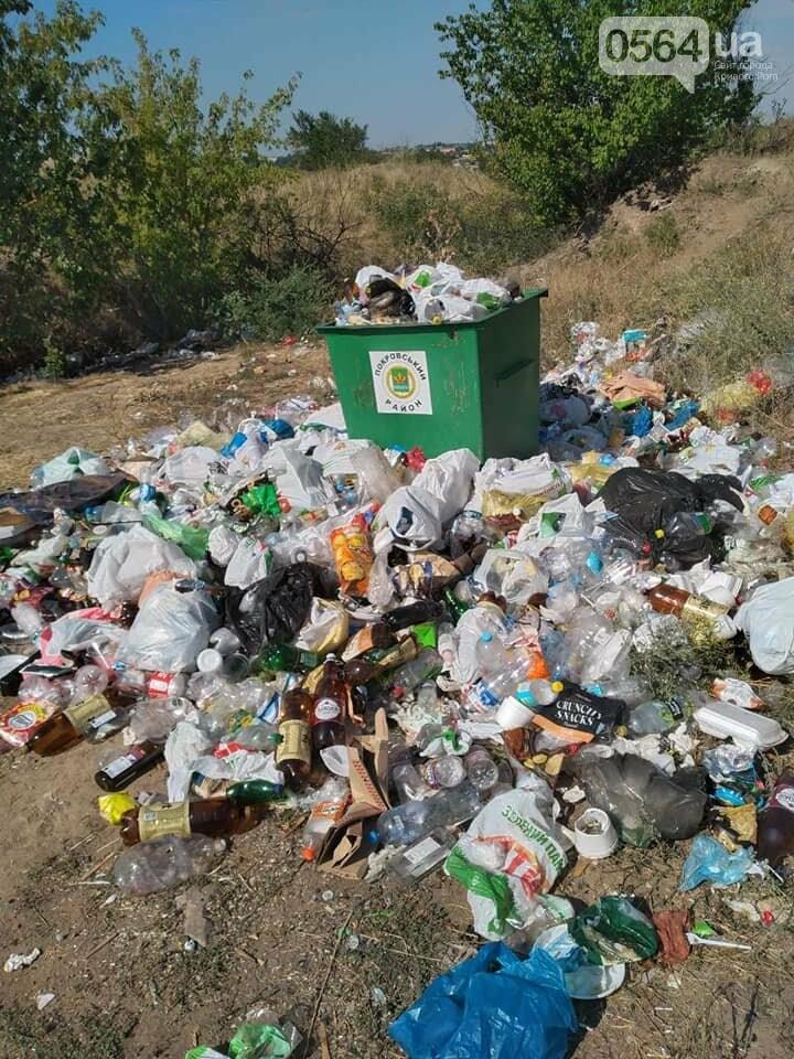 В Кривом Роге на Гранкарьере украли один из двух мусорных контейнеров, - ФОТО , фото-3