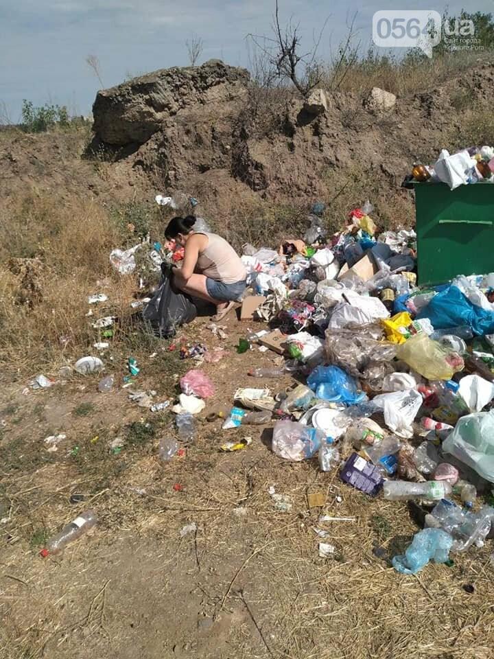 В Кривом Роге на Гранкарьере украли один из двух мусорных контейнеров, - ФОТО , фото-1