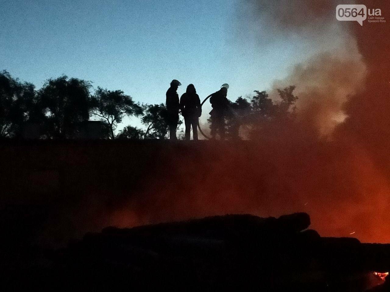На деревообрабатывающем предприятии Кривого Рога огонь уничтожил несколько сотен квадратных метров бруса, - ФОТО, ВИДЕО, фото-3