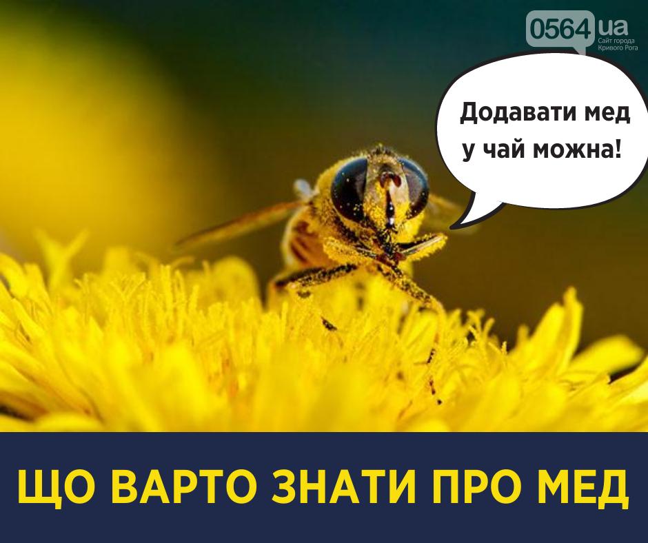 Почему добавлять мед в чай можно, а обмазывать соску медом нет, - мифы и правда о меде от Ульяны Супрун, фото-1