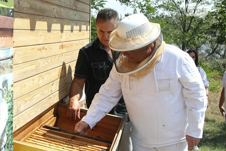 Пчеловодов Криворожья поздравили с Яблочным Спасом и Днем пасечника, - ФОТО , фото-5