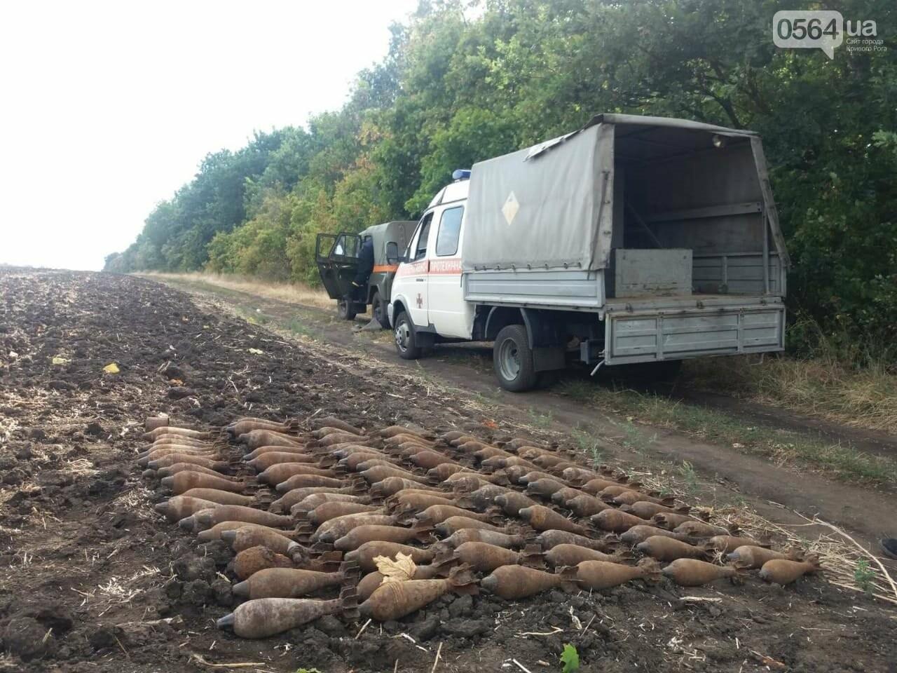 На Днепропетровщине мужчина обнаружил в поле более 100 взрывоопасных предметов, - ФОТО, ВИДЕО, фото-1