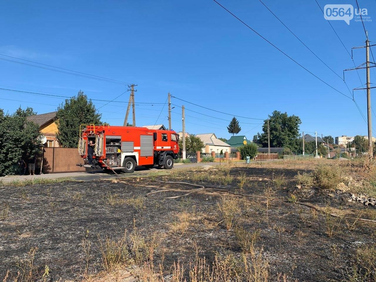 В Кривом Роге возле частного сектора произошел пожар в экосистеме, - ФОТО , фото-11