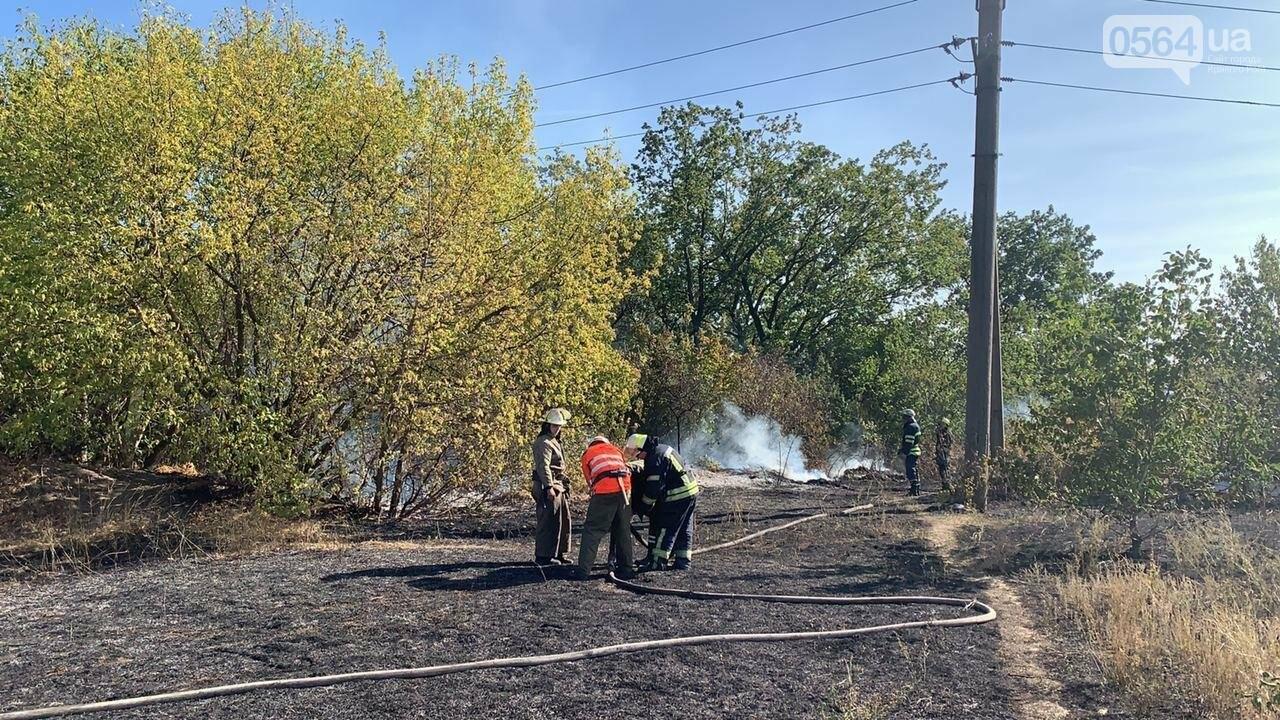 В Кривом Роге возле частного сектора произошел пожар в экосистеме, - ФОТО , фото-6