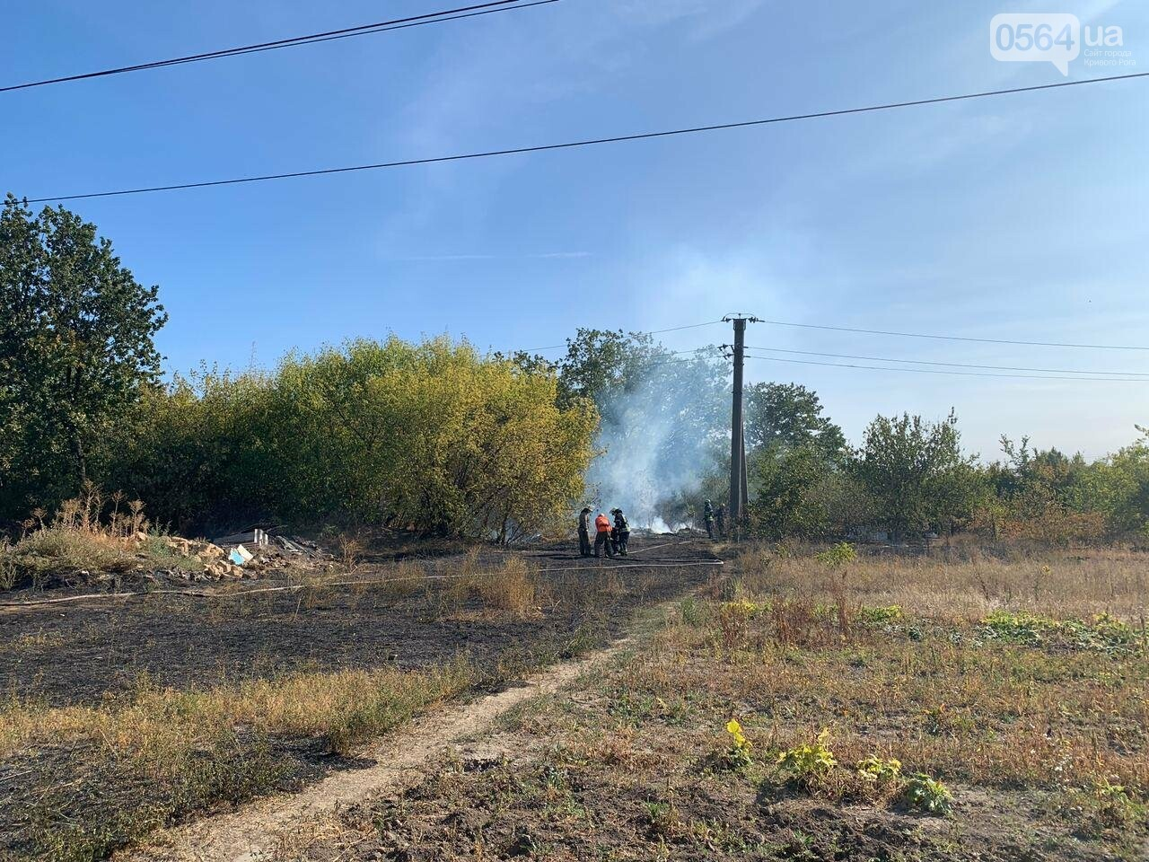 В Кривом Роге возле частного сектора произошел пожар в экосистеме, - ФОТО , фото-2
