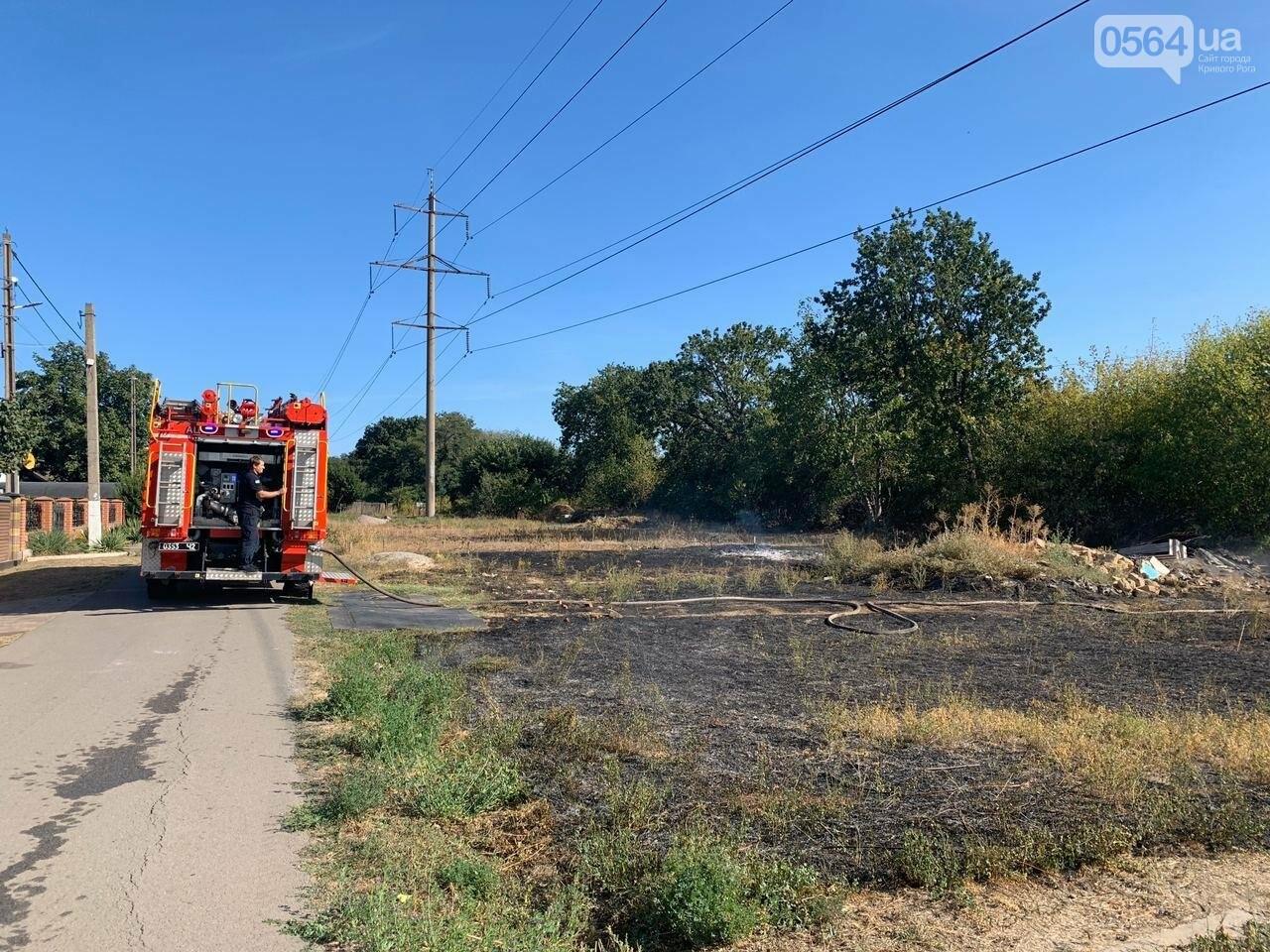 В Кривом Роге возле частного сектора произошел пожар в экосистеме, - ФОТО , фото-4