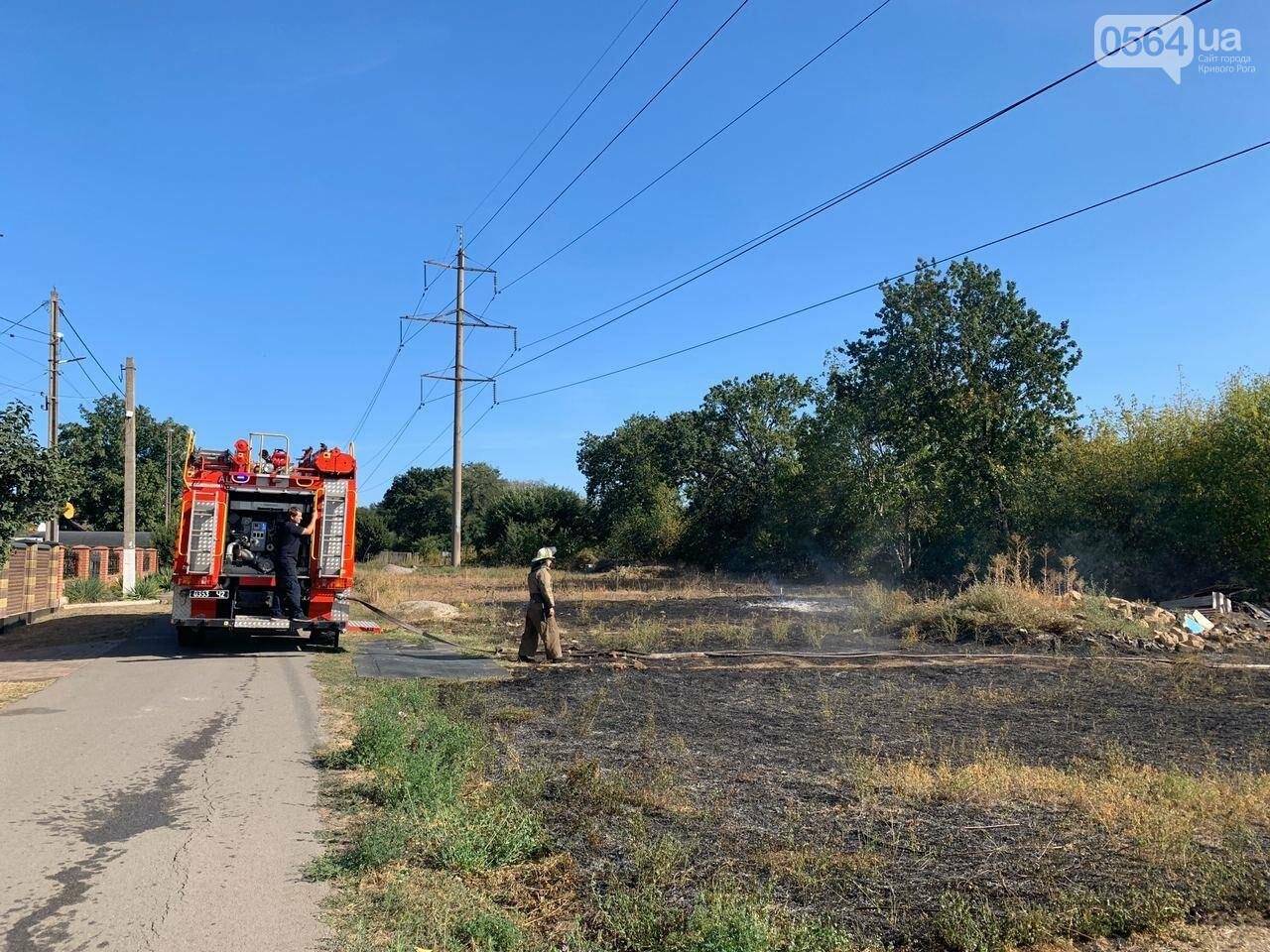 В Кривом Роге возле частного сектора произошел пожар в экосистеме, - ФОТО , фото-8