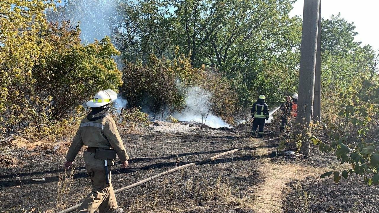 В Кривом Роге возле частного сектора произошел пожар в экосистеме, - ФОТО , фото-1