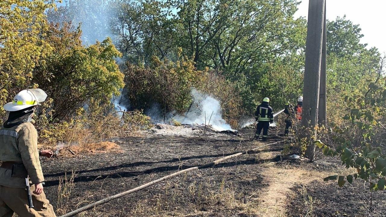 В Кривом Роге возле частного сектора произошел пожар в экосистеме, - ФОТО , фото-10