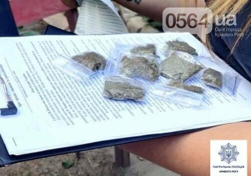 За 3 недели в Кривом Роге патрульные зафиксировали 80 случаев, связанных с наркотиками, - ФОТО , фото-10