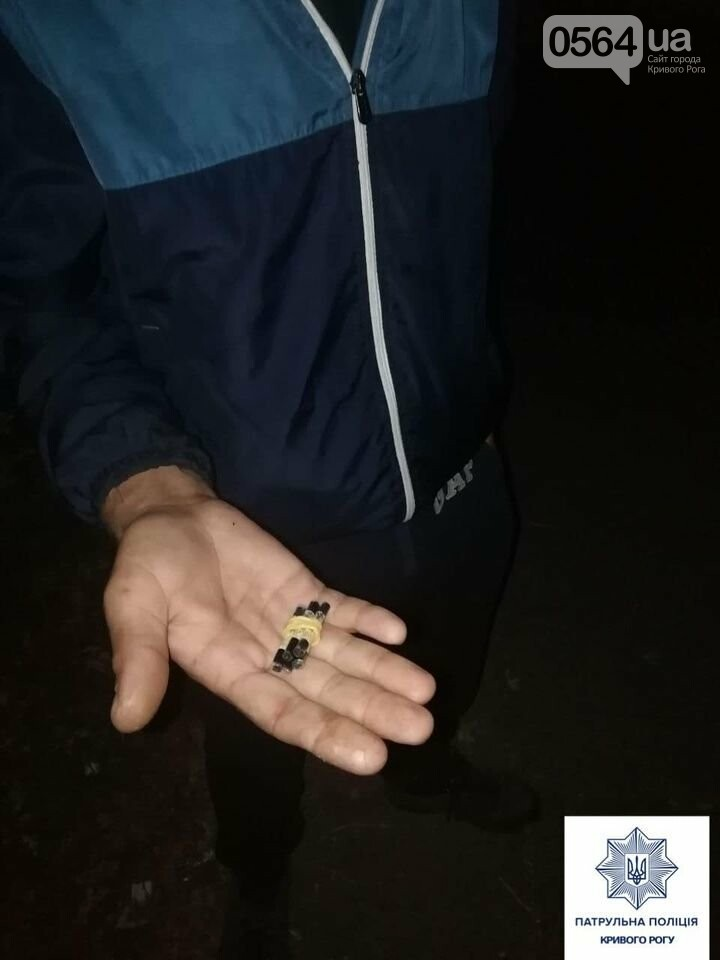 За 3 недели в Кривом Роге патрульные зафиксировали 80 случаев, связанных с наркотиками, - ФОТО , фото-4