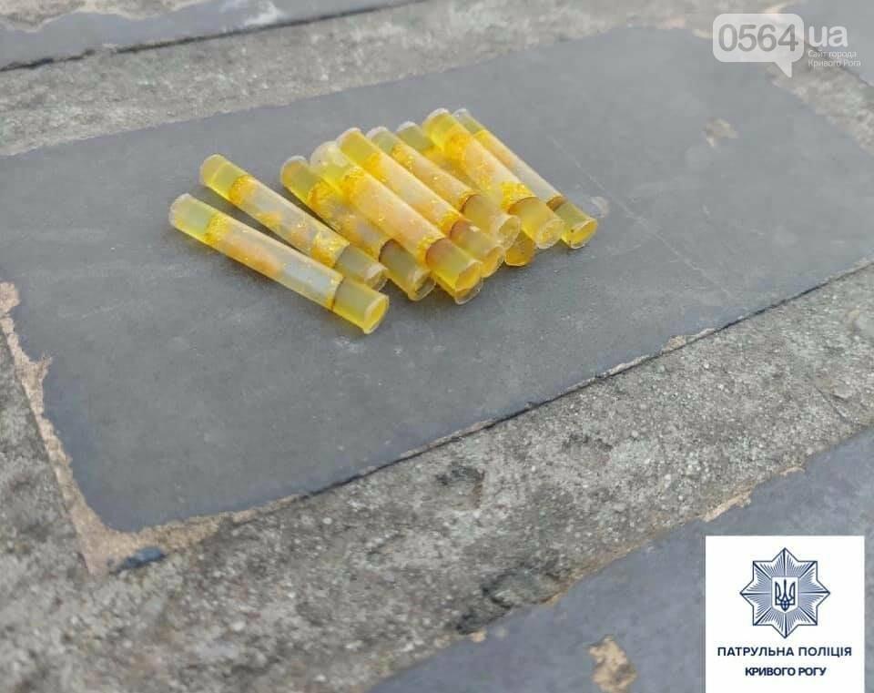 За 3 недели в Кривом Роге патрульные зафиксировали 80 случаев, связанных с наркотиками, - ФОТО , фото-9