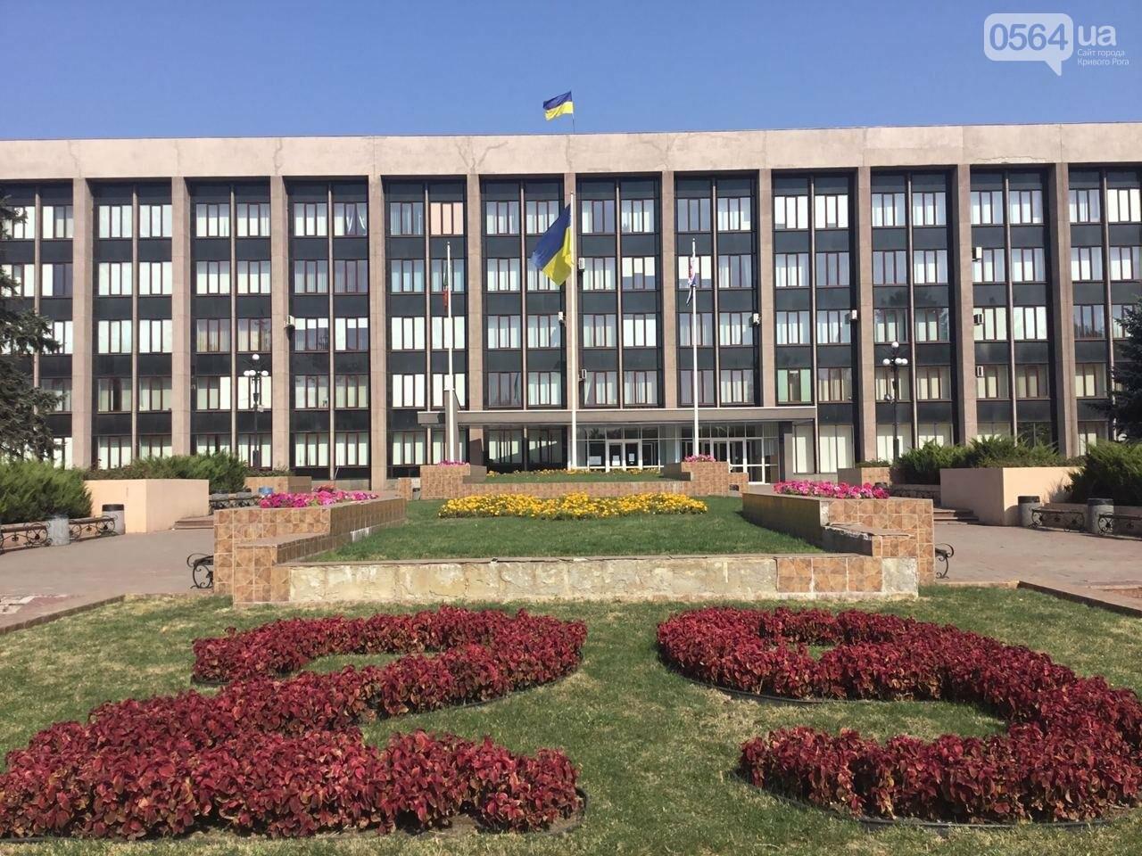 9 кандидатов в мэры и 7 партийных списков, - кого в Кривом Роге зарегистрировали кандидатами в градоначальники, - ФОТО, ВИДЕО, фото-14
