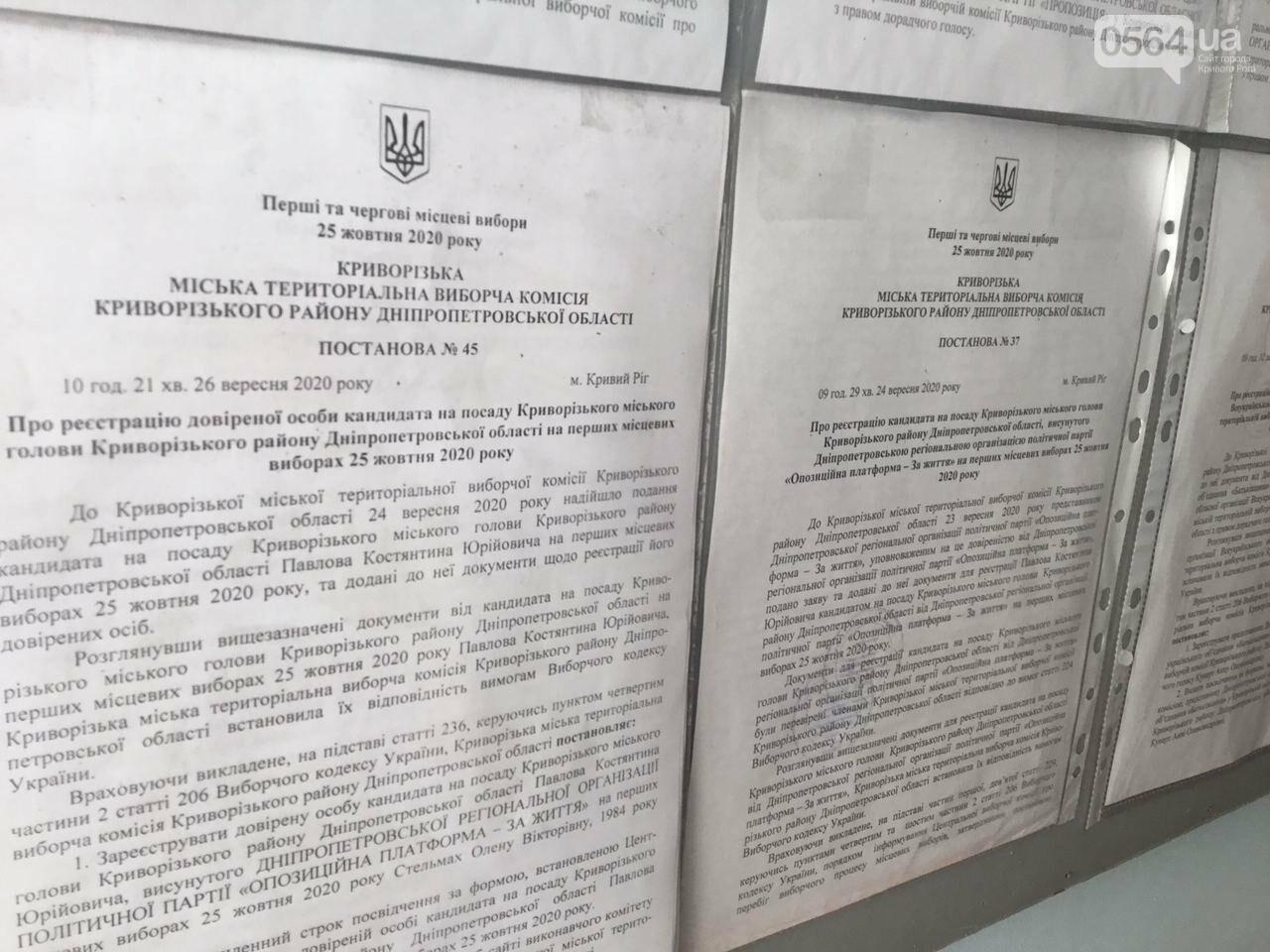 9 кандидатов в мэры и 7 партийных списков, - кого в Кривом Роге зарегистрировали кандидатами в градоначальники, - ФОТО, ВИДЕО, фото-11