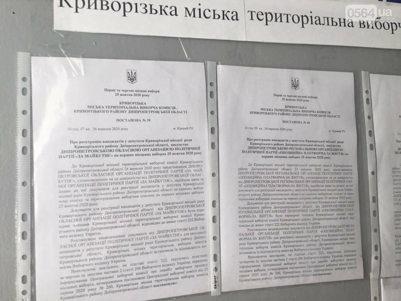 9 кандидатов в мэры и 7 партийных списков, - кого в Кривом Роге зарегистрировали кандидатами в градоначальники, - ФОТО, ВИДЕО, фото-12