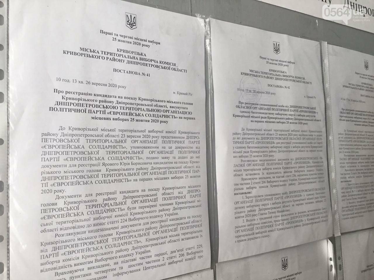 9 кандидатов в мэры и 7 партийных списков, - кого в Кривом Роге зарегистрировали кандидатами в градоначальники, - ФОТО, ВИДЕО, фото-13