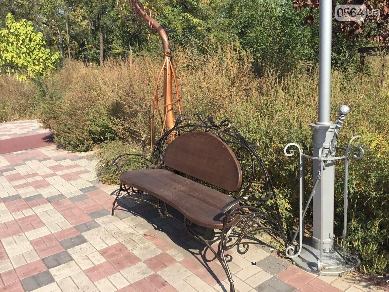 """""""Политика и бесхозяйственность"""", - криворожане поделились мнениями о Гданцевском парке, - ФОТО, ВИДЕО, фото-89"""