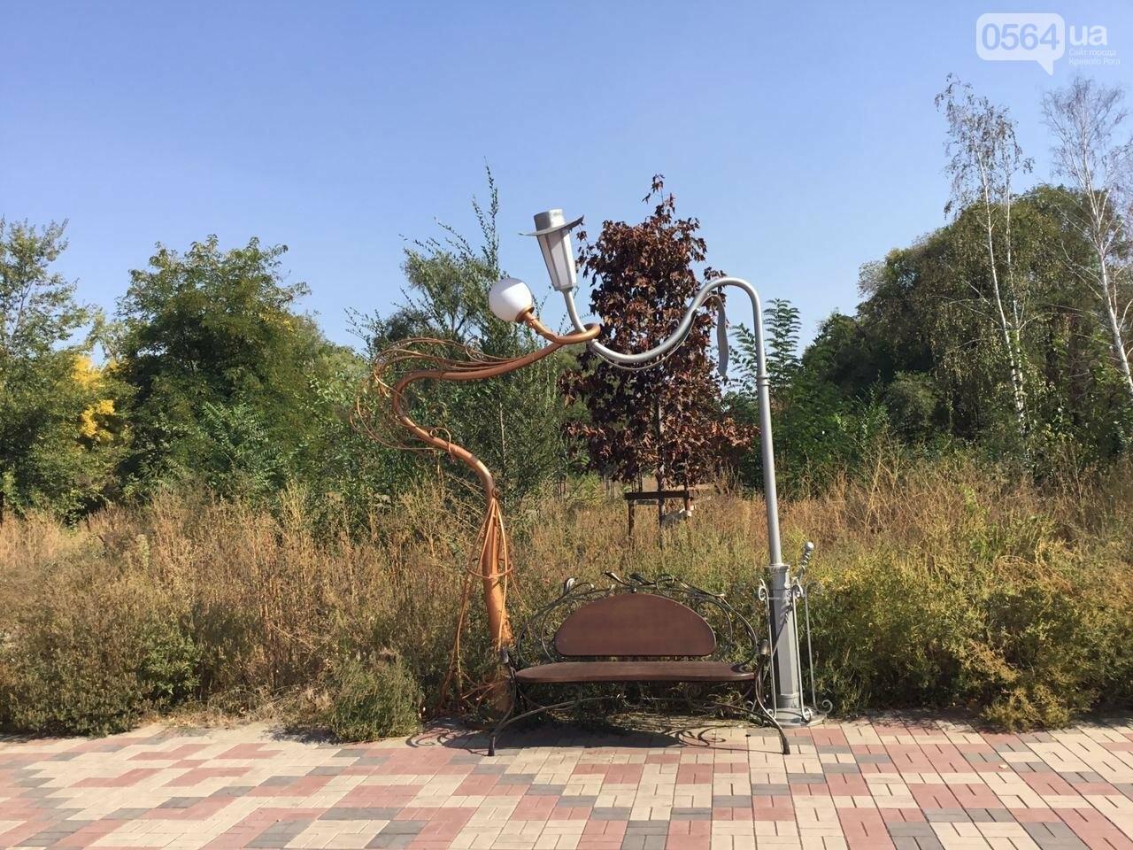 """""""Политика и бесхозяйственность"""", - криворожане поделились мнениями о Гданцевском парке, - ФОТО, ВИДЕО, фото-80"""
