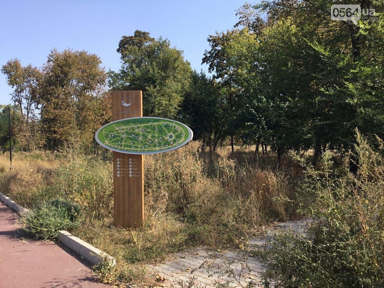 """""""Политика и бесхозяйственность"""", - криворожане поделились мнениями о Гданцевском парке, - ФОТО, ВИДЕО, фото-77"""