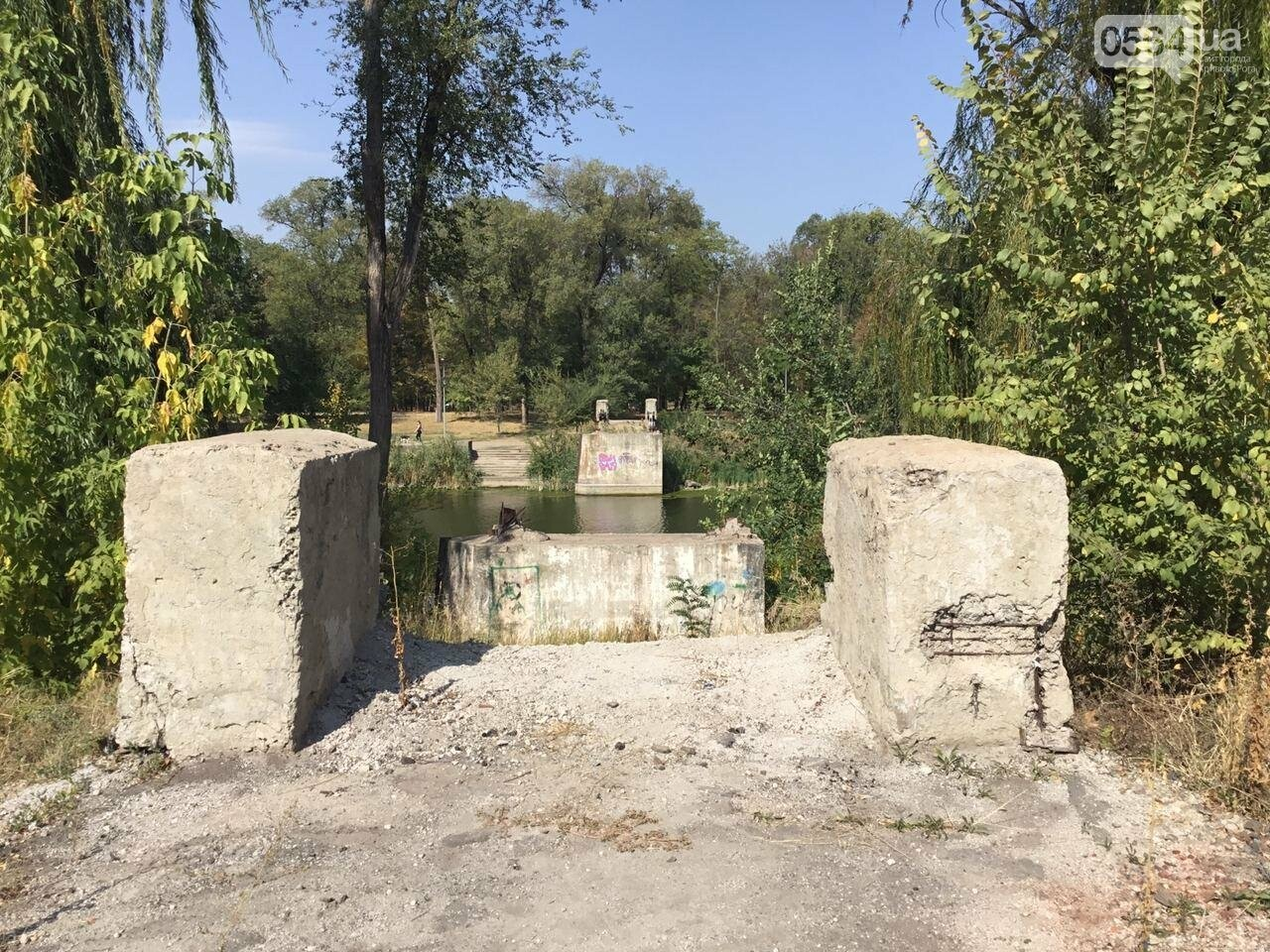 """""""Политика и бесхозяйственность"""", - криворожане поделились мнениями о Гданцевском парке, - ФОТО, ВИДЕО, фото-73"""