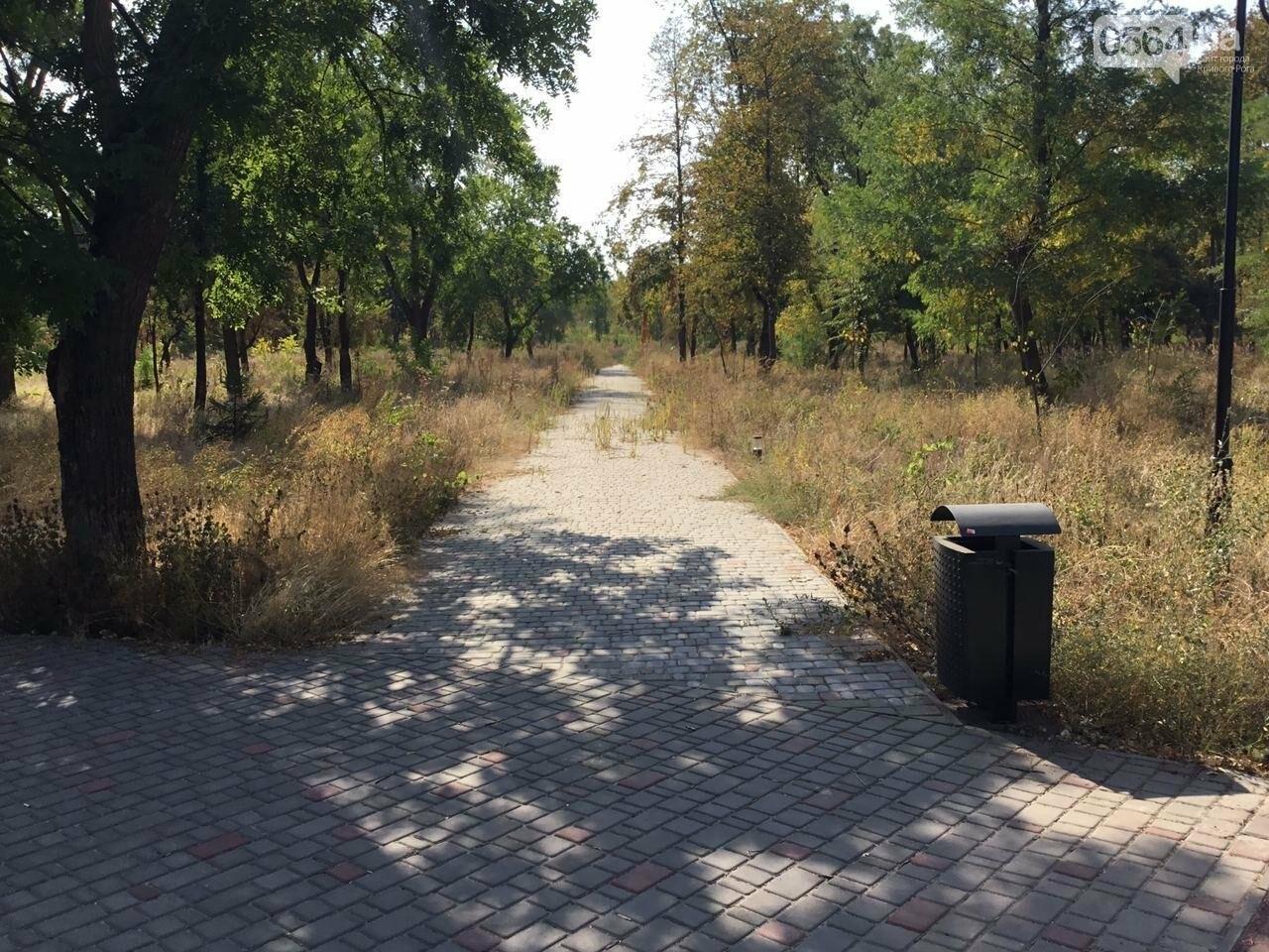 """""""Политика и бесхозяйственность"""", - криворожане поделились мнениями о Гданцевском парке, - ФОТО, ВИДЕО, фото-72"""