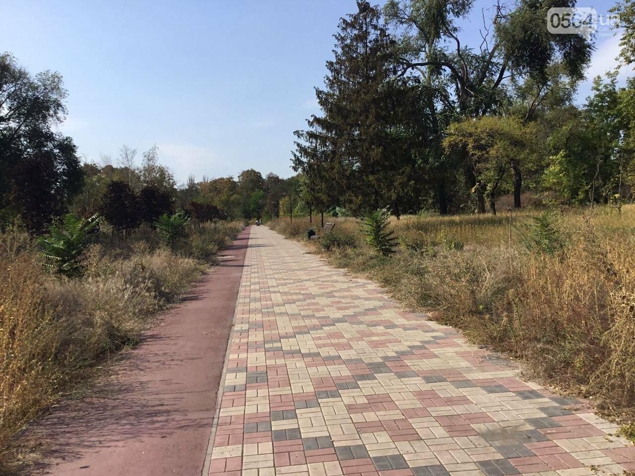 """""""Политика и бесхозяйственность"""", - криворожане поделились мнениями о Гданцевском парке, - ФОТО, ВИДЕО, фото-65"""