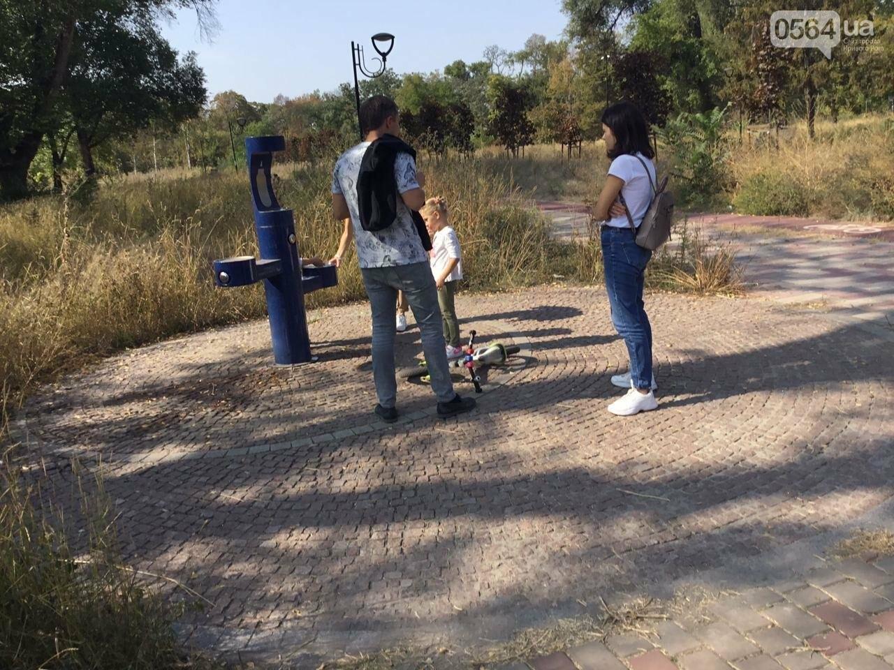 """""""Политика и бесхозяйственность"""", - криворожане поделились мнениями о Гданцевском парке, - ФОТО, ВИДЕО, фото-64"""