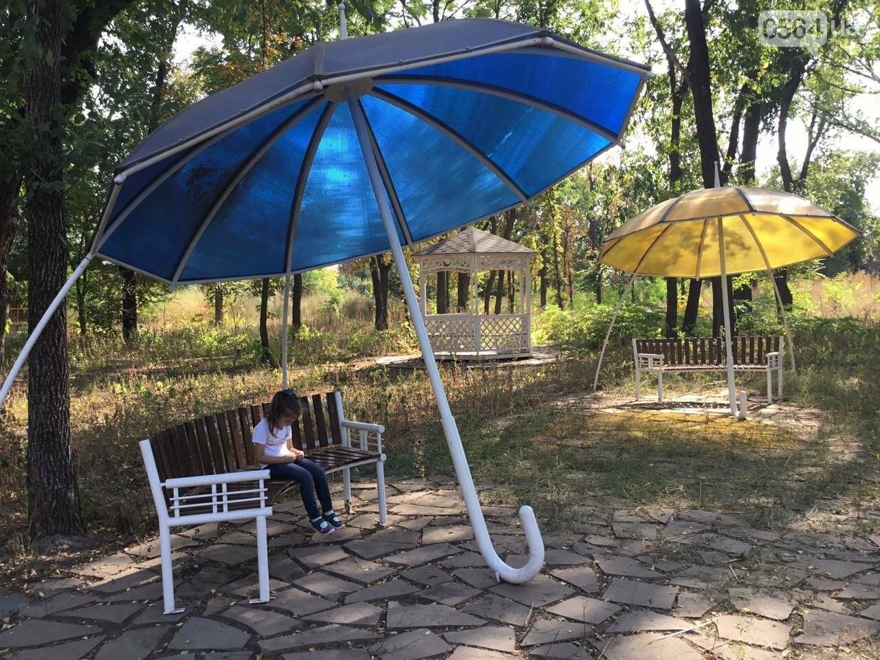 """""""Политика и бесхозяйственность"""", - криворожане поделились мнениями о Гданцевском парке, - ФОТО, ВИДЕО, фото-61"""