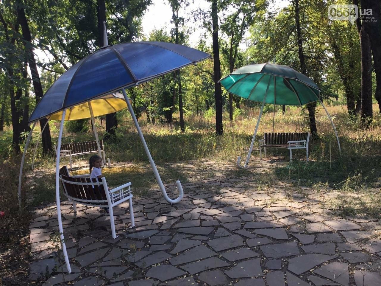 """""""Политика и бесхозяйственность"""", - криворожане поделились мнениями о Гданцевском парке, - ФОТО, ВИДЕО, фото-60"""
