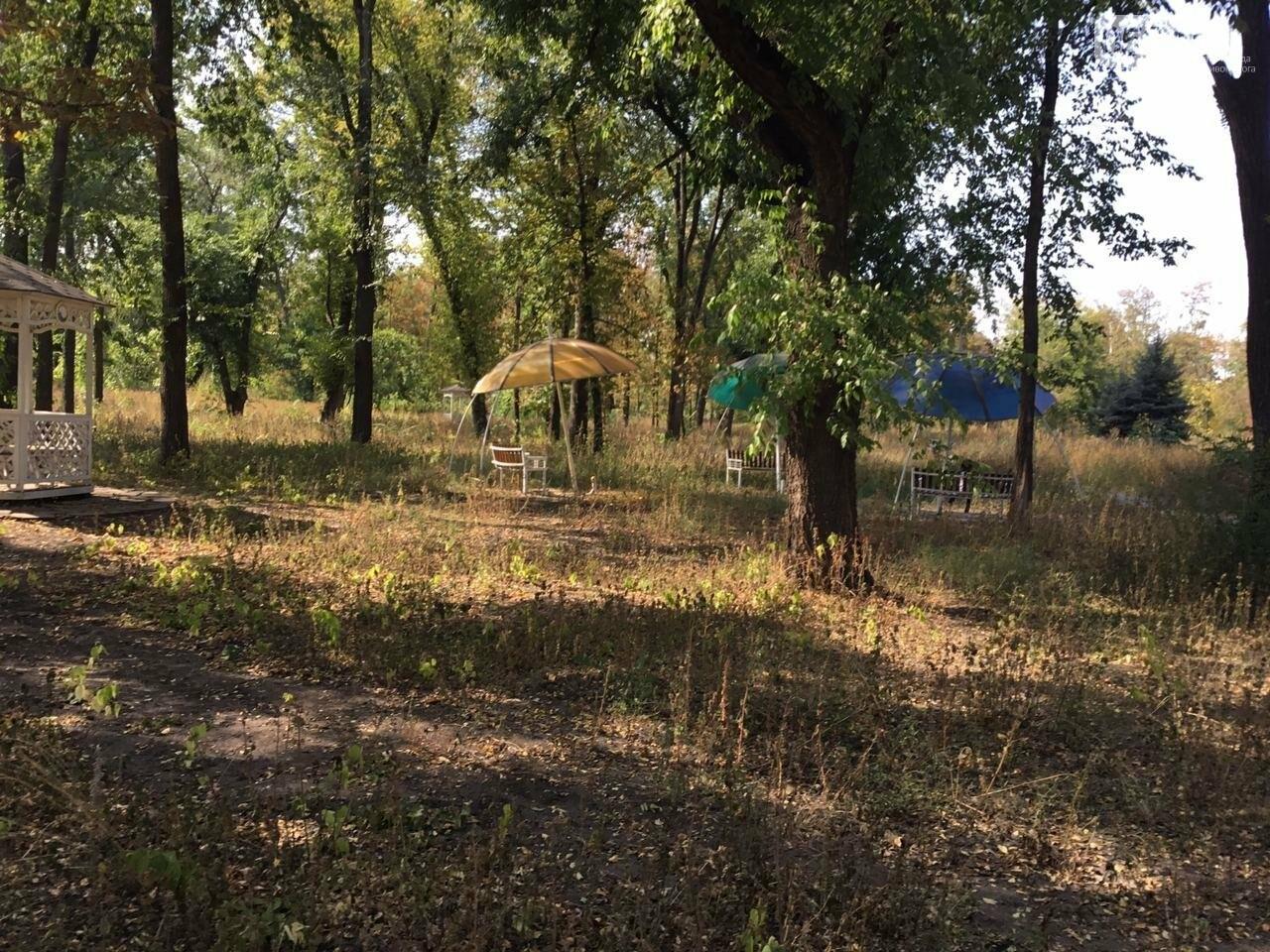 """""""Политика и бесхозяйственность"""", - криворожане поделились мнениями о Гданцевском парке, - ФОТО, ВИДЕО, фото-56"""