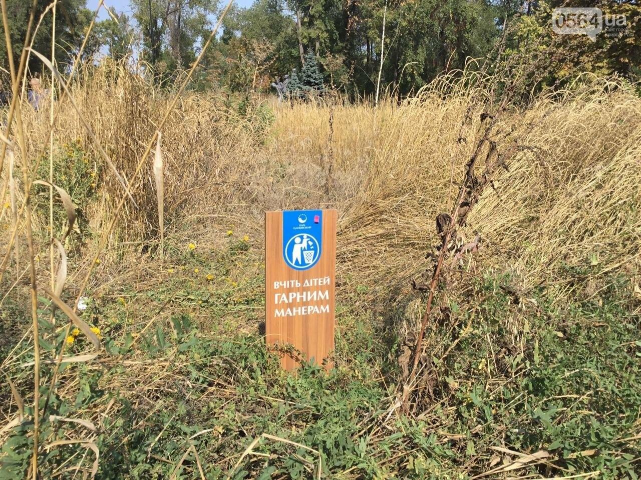 """""""Политика и бесхозяйственность"""", - криворожане поделились мнениями о Гданцевском парке, - ФОТО, ВИДЕО, фото-55"""