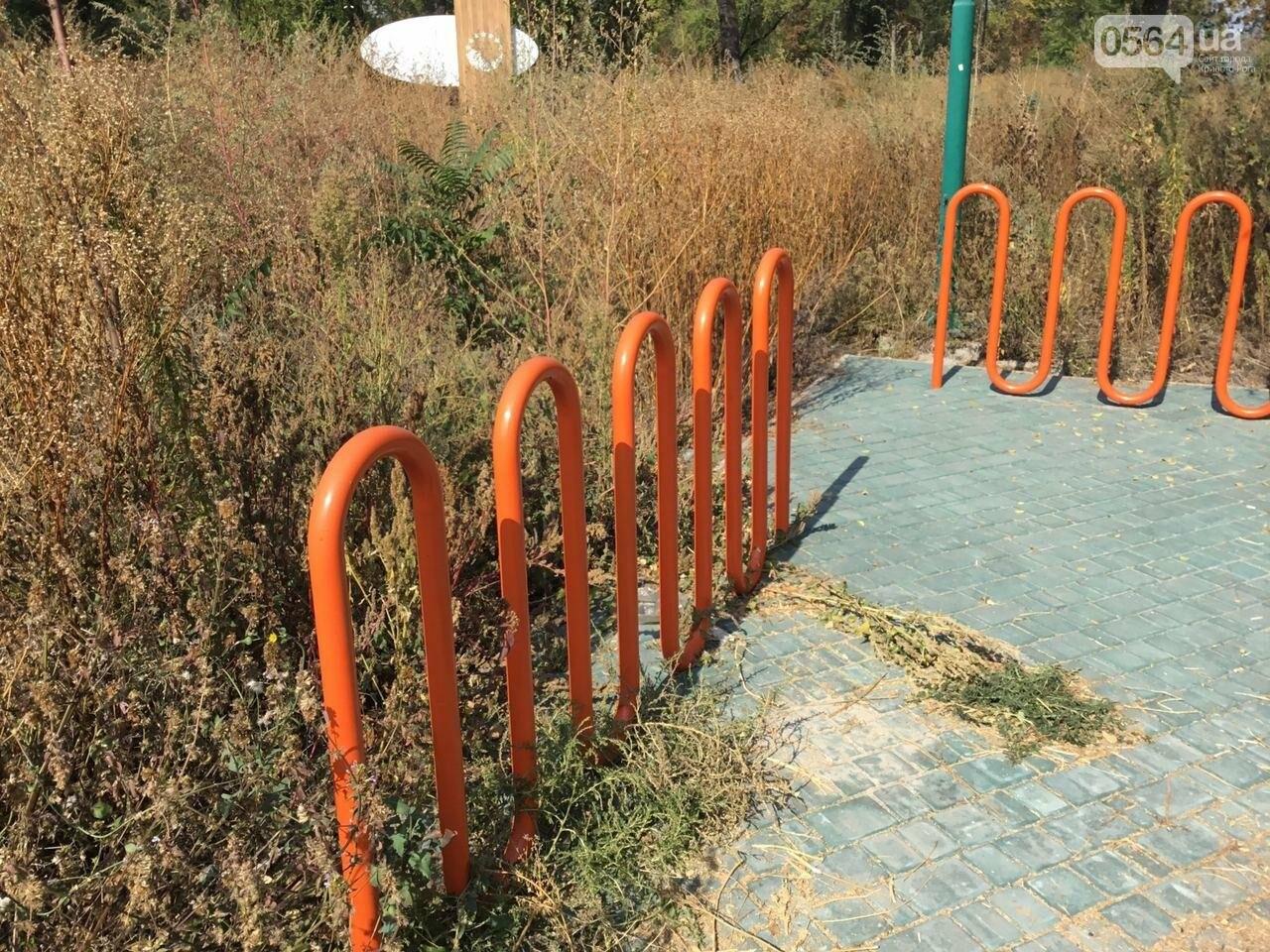 """""""Политика и бесхозяйственность"""", - криворожане поделились мнениями о Гданцевском парке, - ФОТО, ВИДЕО, фото-45"""
