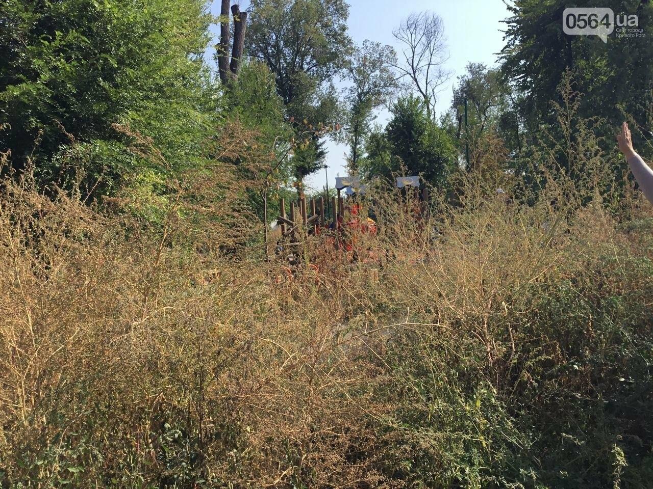 """""""Политика и бесхозяйственность"""", - криворожане поделились мнениями о Гданцевском парке, - ФОТО, ВИДЕО, фото-42"""