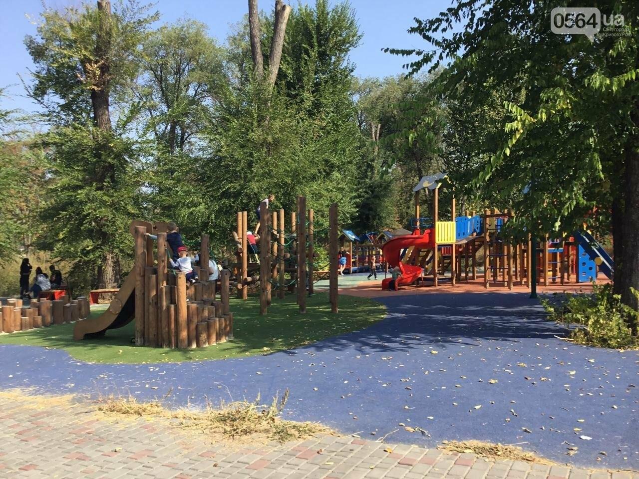 """""""Политика и бесхозяйственность"""", - криворожане поделились мнениями о Гданцевском парке, - ФОТО, ВИДЕО, фото-16"""
