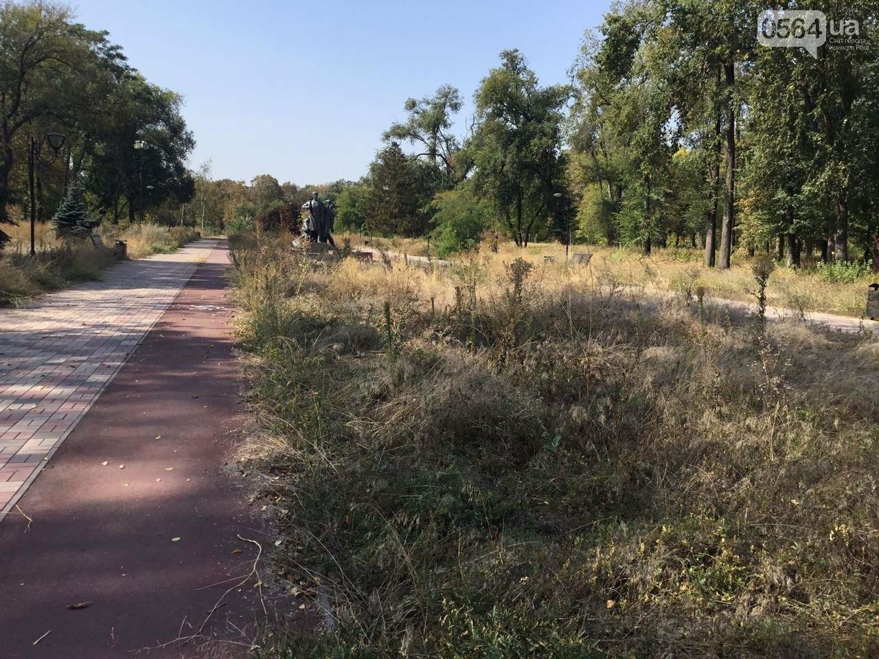 """""""Политика и бесхозяйственность"""", - криворожане поделились мнениями о Гданцевском парке, - ФОТО, ВИДЕО, фото-41"""